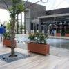 Caribbean Trough Planters Matlosana Mall