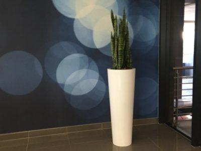 Cone-Planter-White-Athol-Towers-5