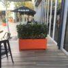 Orange Caribbean Trough Planter Outdoor